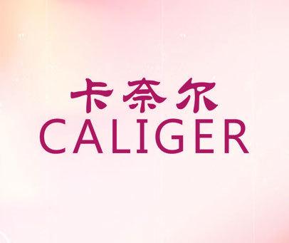 卡奈尔 CALIGER