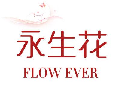 永生花  FLOW EVER