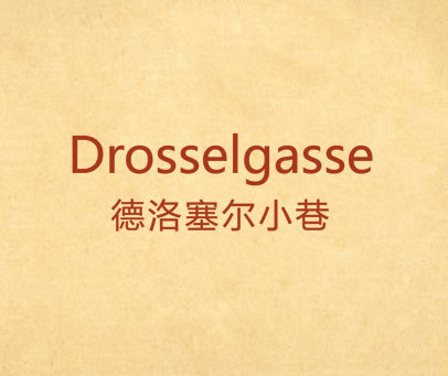 德洛塞尔小巷 DROSSELGASSE