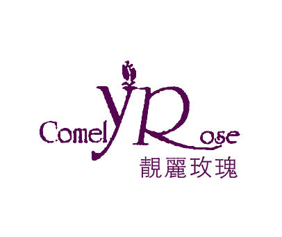 靓丽玫瑰-COMELYROSE