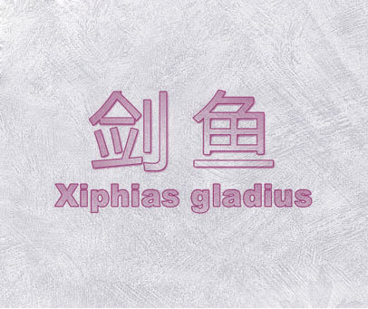 剑鱼  XIPHIAS GLADIUS
