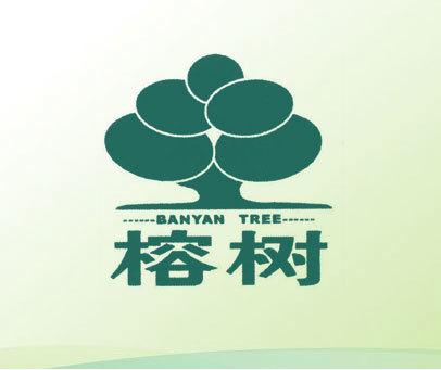 榕树 BANYAN TREE