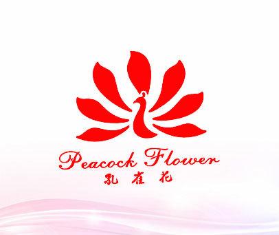 孔雀花 PEACOCK FLOWER
