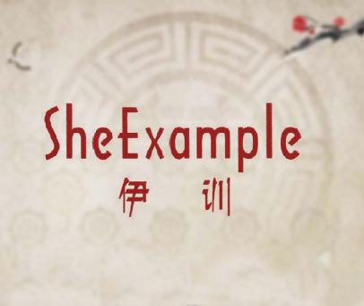 伊训 SHEEXAMPLE