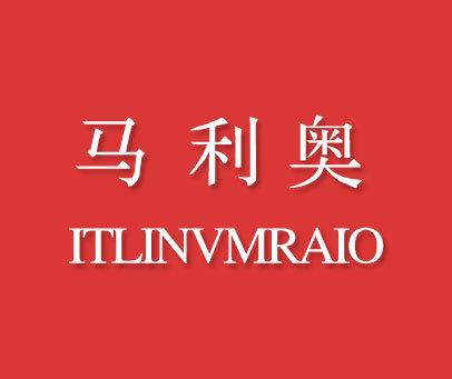 马利奥-ITLINVMRAIO