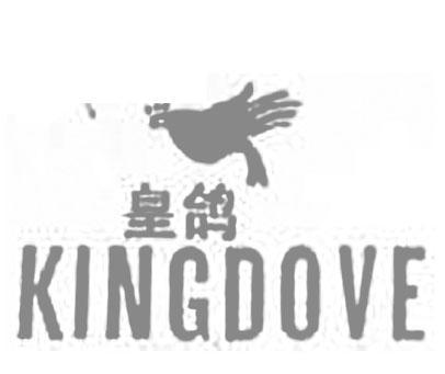 皇鸽-KINGDOVE