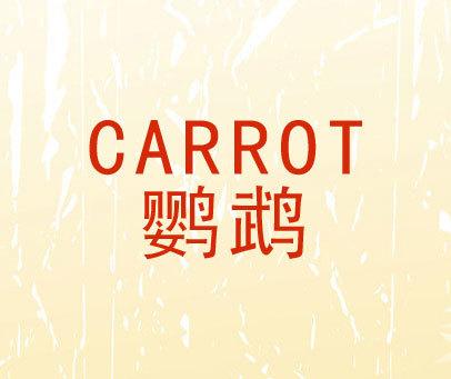 鹦鹉-CARROT