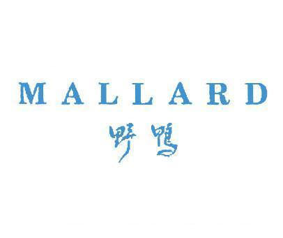 野鸭-MALLARD