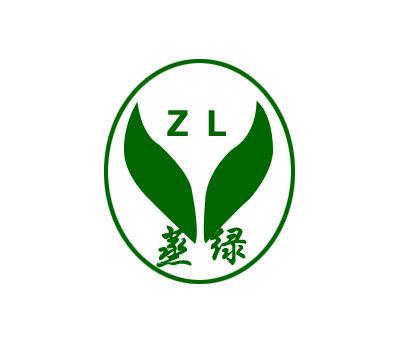 蒸绿-ZL
