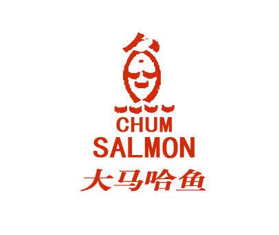 大马哈鱼-CHUMSALMON