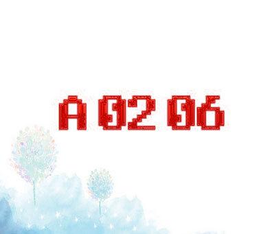 A 02 06