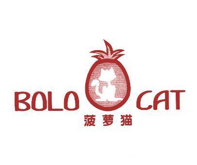 菠萝猫-BOLOCAT