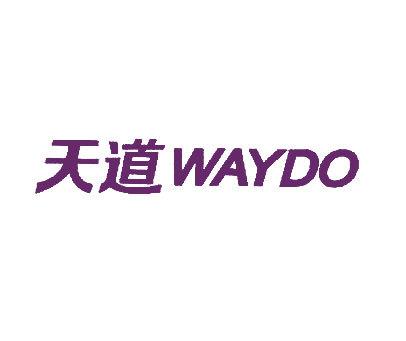 天道-WAYDO