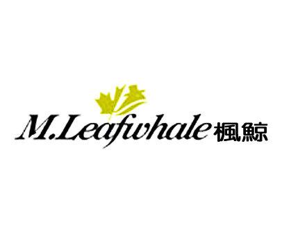 枫鲸-M.LEAFWHALE