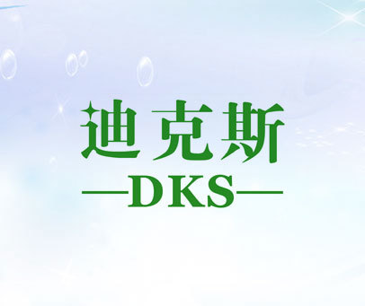 迪克斯 DKS