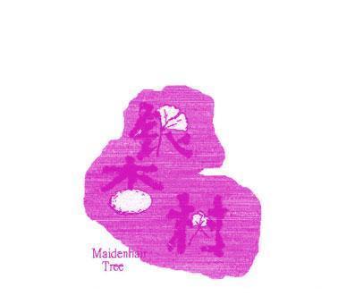 银杏树-MAIDENHAIRTREE