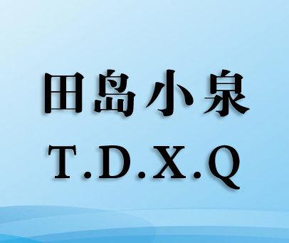 田岛小泉-T.D.X.Q