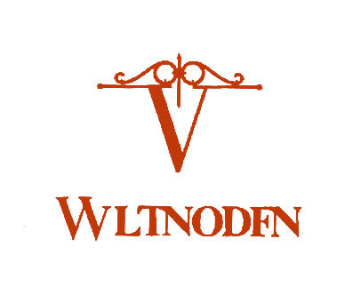 V-WLTNODFN
