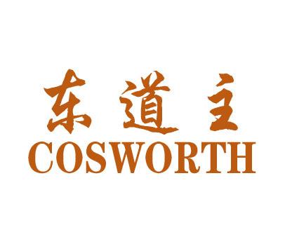 东道主-COSWORTH