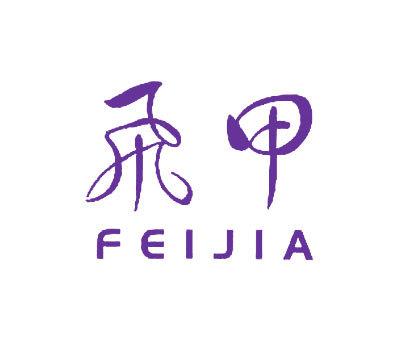 飞甲-FEIJIA
