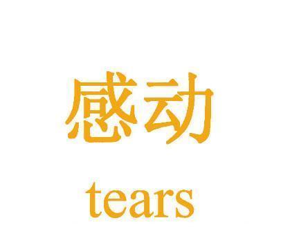 感动-TEARS