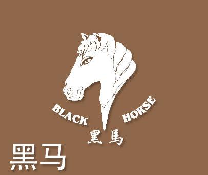 黑马-BLACKHORSE