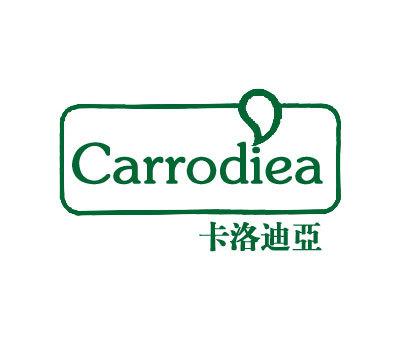 卡洛迪亚-CARRODIEA