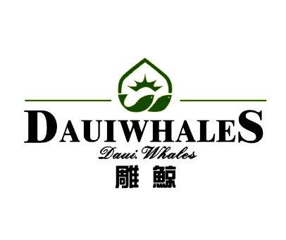 雕鲸-DAUIWHALES