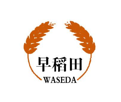 早稻田-WASEDA