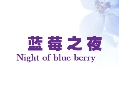 蓝莓之夜-NIGHTOFBLUEBERRY