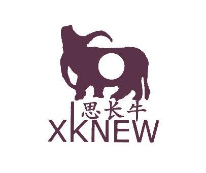 思长牛-XKNEW