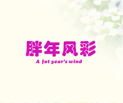 胖年风彩 A FAT YEAR'S WIND